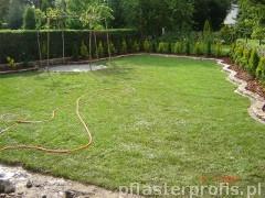 Ogród wyłożony trawnikiem z rolki