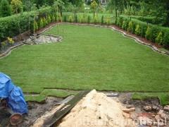 Widok na trawnik w ogrodzie